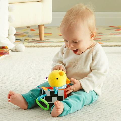 Fisher Price Vrabiuta Cantareata