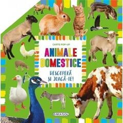 GIRASOL Carte pop-up - animale domestice